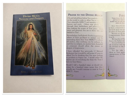 Photo of DIVINE MERCY NOVENA & PRAYERS BOOKLET DM-NV